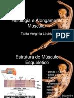 Fisiologia e Alongamento Muscular