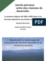 Amazonia peruana el choque entre dos visiones del desarrollo.pdf