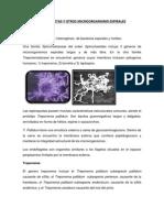 Espiroquetas y Otros Microorganismo Espirales