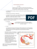 8.Contractilidad Muscular I