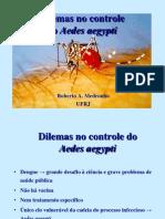 Dilemas No Controle Da Dengue