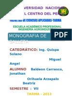 Monografia de La Galletas
