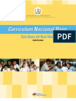 CNB Nivel Medio[1]