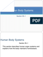 Human Body Systems1