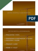 Sistem Indera 2