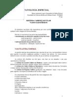 74497543 Resumo Vasos Sanguineos Patologia