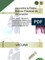 Vacunas y Buenas Prácticas de Vacunación