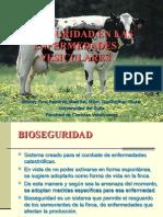 Aspectos de Bioseguridad en el Manejo de Enfermedades Vesiculares