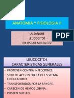 Leucocitos Anato II 09