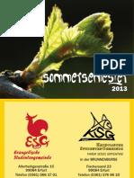 Semesterprogramm SoSe 2013