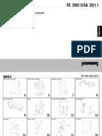 2011_FE390.pdf