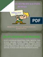 Power Point DM