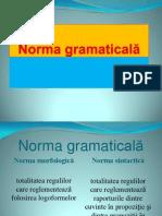 Norma gramaticală