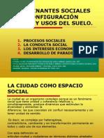 Determinantes Sociales 2010