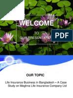 Insurance Slide