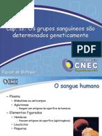Cap. 12 Os Grupos Sanguineos Sao Determinados Geneticamente