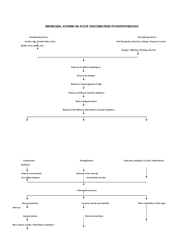 bronchial asthma in acute exacerbation case study scribd