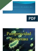 MÓDULO 4 - Fisiopatogenia I Dra.  Mattana.