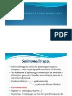 MÓDULO 4 Fisiopatogeniainfeccionesbacterianas II  Dra. Mattana