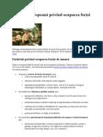 Strategia europeană privind ocuparea forţei de muncă