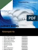 Survey Model Fix a4