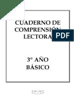 CUADERNILLO DE COMPRENSION LECTORA
