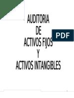 Auditoria de Activos Fijos y Activos Intangibles