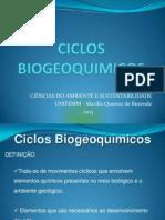 Aula 2 Ciclos Biogeoquimicos