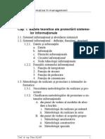 Curs de Sisteme informationale in management