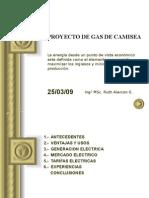 Camisea-sector Electrico 2