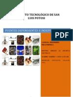 INSTITUTO TECNOLÓGICO DE SAN LUIS POTOSI CIRCUITOS