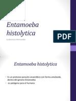 e Histoliticaw