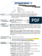 Two Pages Cv 2