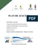 Plan de afaceri-scoala de dans.doc