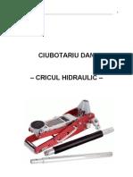 Cricul.doc