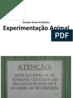 Trabalho de Bioética - Uso de Animais em Experimentos (não foi usado)