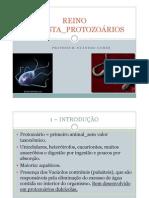 Reino Protista Protozoarios