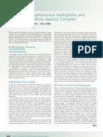 Stenotrophomona Maltophilia y Bulkorelia Cepacia. Mnadell 2009