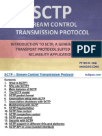 Overview of SCTP (Stream Control Transmission Protocol)