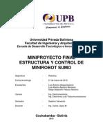 Informe Final Sumo