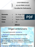 Clase III de Tejido Conjuntivo 2013