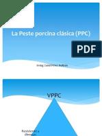 La  Peste porcina clásica (PPC)
