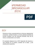 EVC Finale