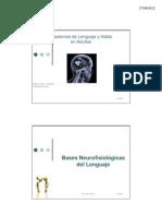 Bases Neurofisiologicas Del Lenguaje Flgo. Pablo Godoy o.