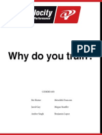 VSP Long Book Draft 2-1
