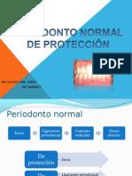 Ppt de Perio (1)