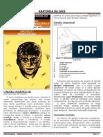ANATOMIA FACIAL - INERVAÇÃO FACIAL - HUBERTT GRÜN