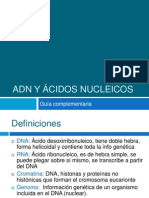 Guía complementaria ADN y ácidos nucleicos.ppt