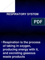 respiratorysystem-101228012430-phpapp01