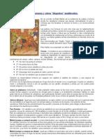 Torneos, Jsutas, Combates y Demas Deportes Nobiliarios en La Edad Media.